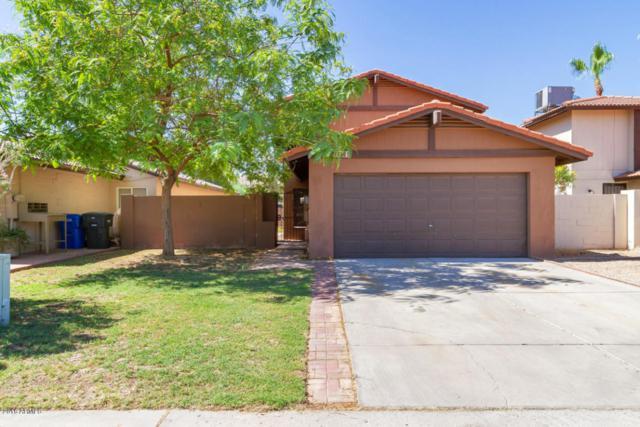 4921 W Crocus Drive, Glendale, AZ 85306 (MLS #5779609) :: Lux Home Group at  Keller Williams Realty Phoenix