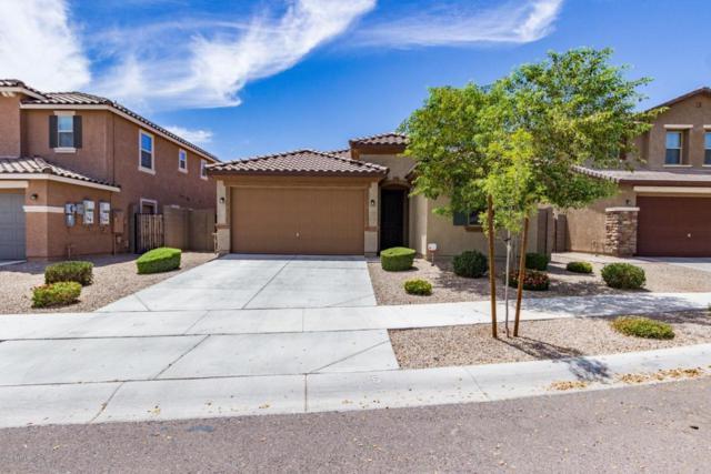 2628 S 171ST Lane, Goodyear, AZ 85338 (MLS #5779666) :: My Home Group