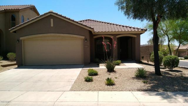 3833 W Blue Eagle Lane, Phoenix, AZ 85086 (MLS #5779737) :: Essential Properties, Inc.