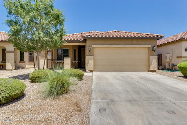 4210 E Alamo Street, San Tan Valley, AZ 85140 (MLS #5779748) :: My Home Group