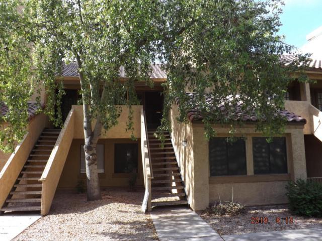 4901 S Calle Los Cerros Drive #258, Tempe, AZ 85282 (MLS #5779795) :: Essential Properties, Inc.