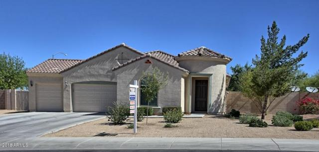 11004 E Quarry Circle, Mesa, AZ 85212 (MLS #5779824) :: My Home Group