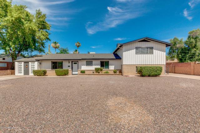 291 N Sunset Drive, Chandler, AZ 85225 (MLS #5779831) :: Essential Properties, Inc.