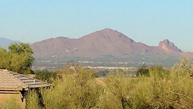 12321 E Columbine Drive, Scottsdale, AZ 85259 (MLS #5779844) :: My Home Group