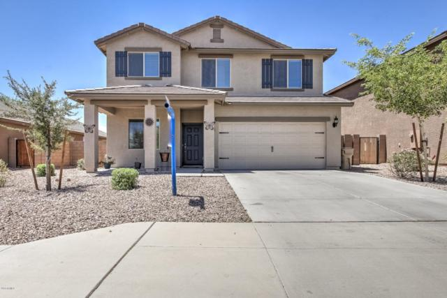 24441 W Mobile Lane, Buckeye, AZ 85326 (MLS #5779881) :: My Home Group