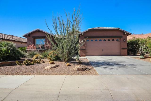 18373 W Statler Street, Surprise, AZ 85388 (MLS #5779933) :: My Home Group