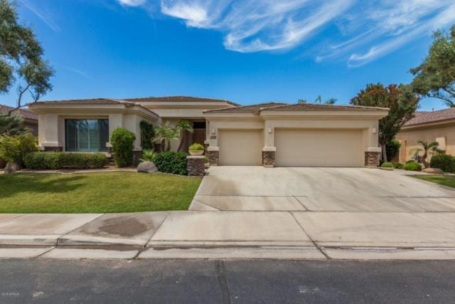 1730 W Tonto Drive, Chandler, AZ 85248 (MLS #5779947) :: Revelation Real Estate