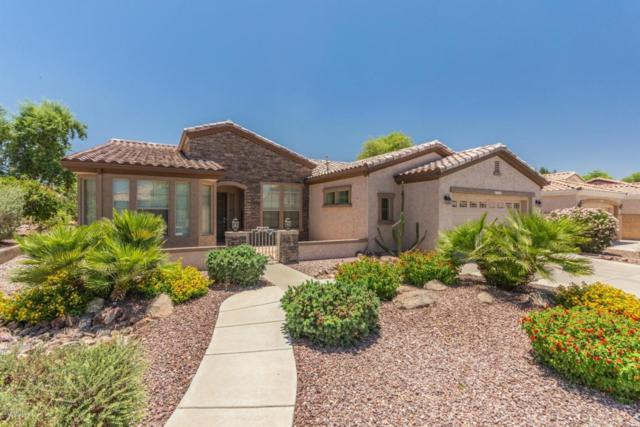 4743 E Carob Drive, Gilbert, AZ 85298 (MLS #5780026) :: The Garcia Group @ My Home Group