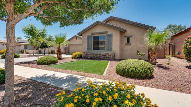15165 W Boca Raton Road, Surprise, AZ 85379 (MLS #5780061) :: Kortright Group - West USA Realty