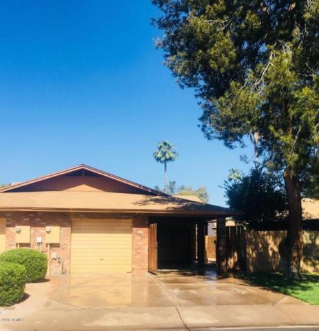 1852 S Toltec, Mesa, AZ 85204 (MLS #5780068) :: My Home Group