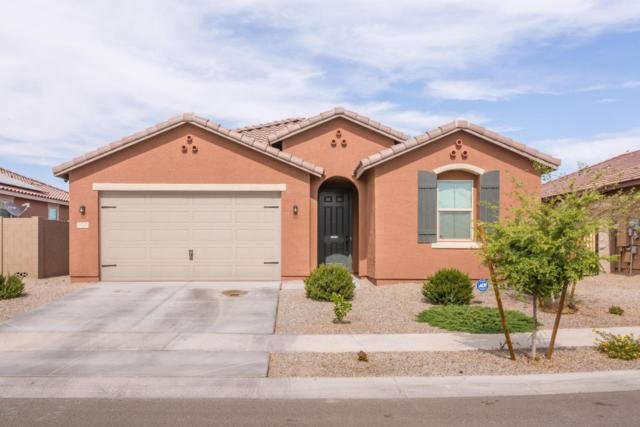 2737 S 171ST Lane, Goodyear, AZ 85338 (MLS #5780078) :: My Home Group