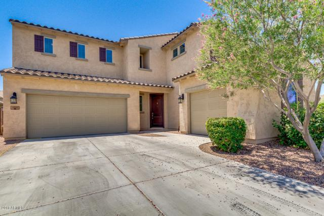 1491 E Ibis Street, Gilbert, AZ 85297 (MLS #5780114) :: Essential Properties, Inc.