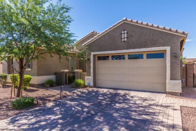 20253 E Maya Road, Queen Creek, AZ 85142 (MLS #5780130) :: Essential Properties, Inc.