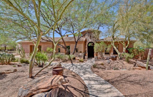 11051 E Meadowhill Drive, Scottsdale, AZ 85255 (MLS #5780143) :: Occasio Realty