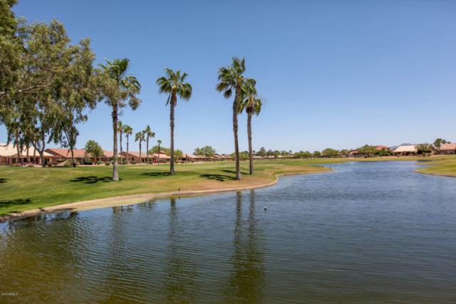 24317 S Angora Drive, Sun Lakes, AZ 85248 (MLS #5780167) :: Gilbert Arizona Realty