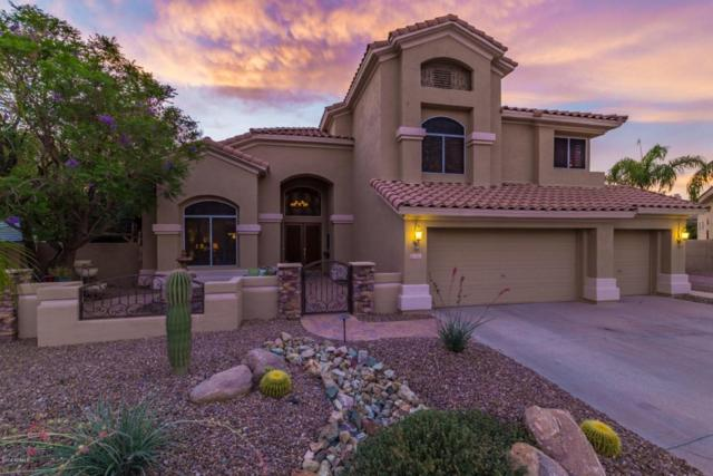 5222 E Anderson Drive, Scottsdale, AZ 85254 (MLS #5780173) :: My Home Group