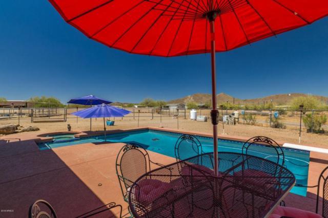 1044 E Irvine Road, Phoenix, AZ 85086 (MLS #5780191) :: The Daniel Montez Real Estate Group