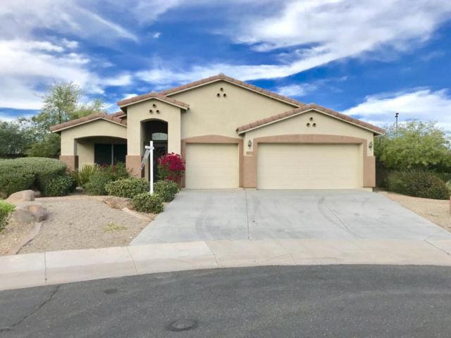 4023 N 293RD Drive, Buckeye, AZ 85396 (MLS #5780192) :: Yost Realty Group at RE/MAX Casa Grande
