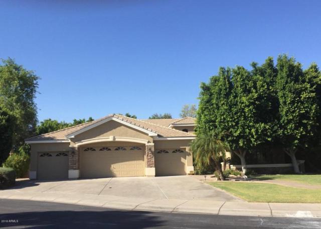 7925 S Dateland Drive, Tempe, AZ 85284 (MLS #5780243) :: Lifestyle Partners Team