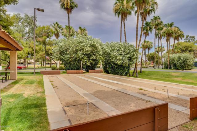 14221 W Shawnee Trail, Surprise, AZ 85374 (MLS #5780280) :: Desert Home Premier