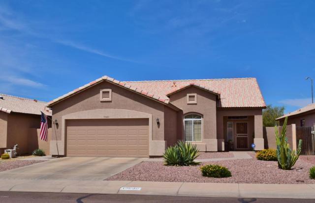 19680 N 110TH Lane, Sun City, AZ 85373 (MLS #5780326) :: Desert Home Premier