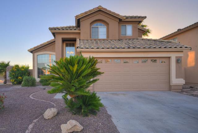 22028 N 74TH Lane, Glendale, AZ 85310 (MLS #5780351) :: Essential Properties, Inc.