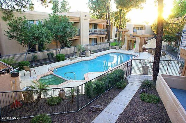 3329 W Danbury Drive F109, Phoenix, AZ 85053 (MLS #5780370) :: Brett Tanner Home Selling Team