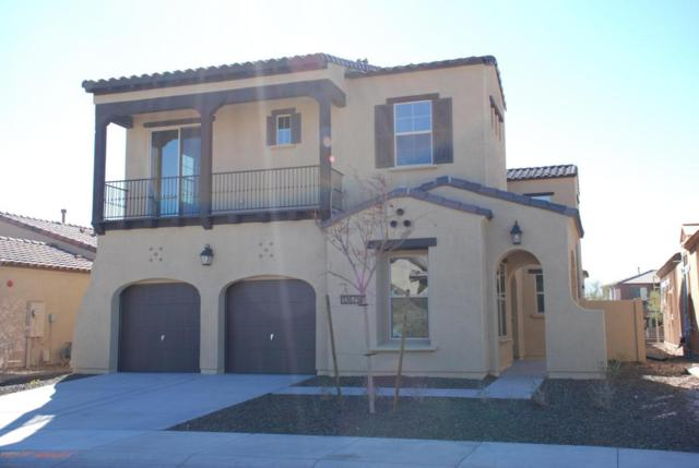 13679 W Creosote Drive, Peoria, AZ 85383 (MLS #5780394) :: My Home Group