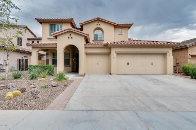 30817 N 125TH Drive, Peoria, AZ 85383 (MLS #5780439) :: My Home Group