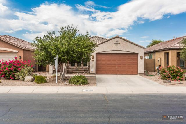 36598 W Picasso Street, Maricopa, AZ 85138 (MLS #5780446) :: The Everest Team at My Home Group