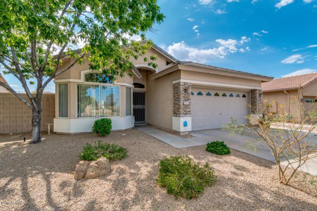 306 S 119TH Drive, Avondale, AZ 85323 (MLS #5780511) :: The Everest Team at My Home Group
