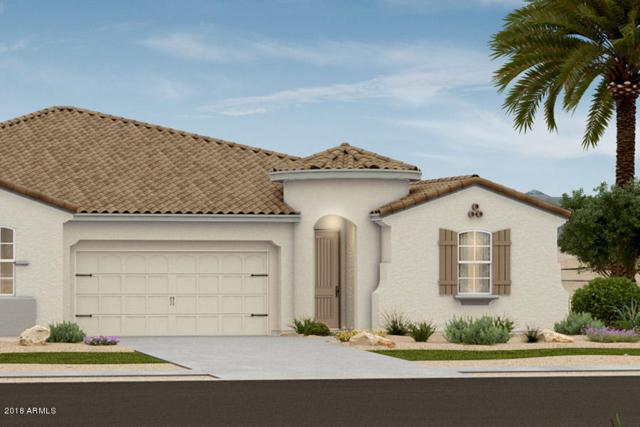 14569 W Reade Avenue, Litchfield Park, AZ 85340 (MLS #5780543) :: The Daniel Montez Real Estate Group