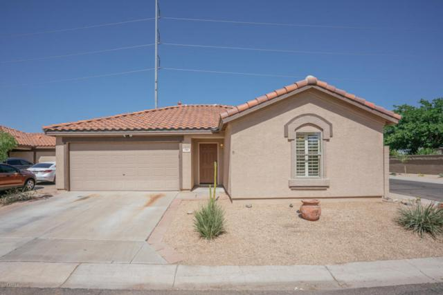 703 E Rose Marie Lane, Phoenix, AZ 85022 (MLS #5780567) :: The Garcia Group @ My Home Group