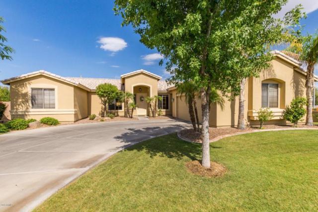 1743 S Santa Anna Street, Chandler, AZ 85286 (MLS #5780653) :: Gilbert Arizona Realty
