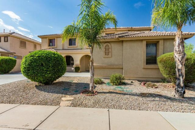 1596 E Carob Drive, Chandler, AZ 85286 (MLS #5780701) :: My Home Group
