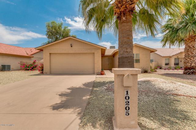 10205 E Navajo Place, Sun Lakes, AZ 85248 (MLS #5780706) :: Gilbert Arizona Realty