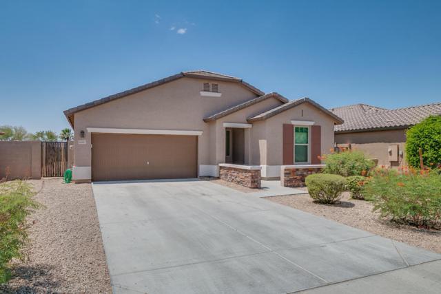 16057 W Almeria Road, Goodyear, AZ 85395 (MLS #5780721) :: My Home Group