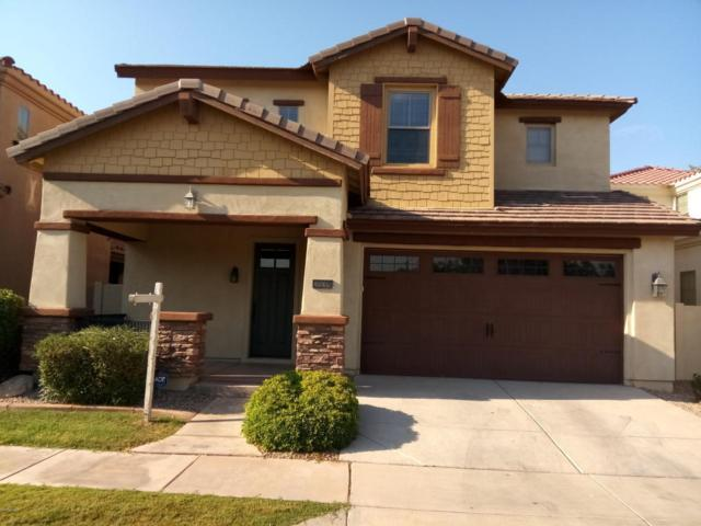 3535 E Kent Avenue, Gilbert, AZ 85296 (MLS #5780832) :: The Everest Team at My Home Group