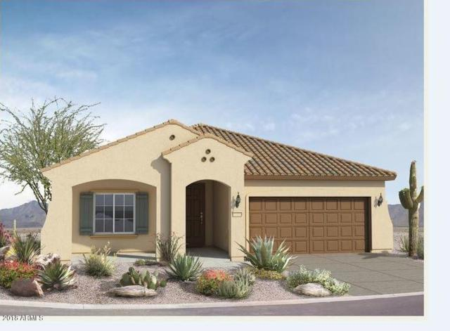 19602 N 260TH Drive, Buckeye, AZ 85396 (MLS #5780974) :: My Home Group