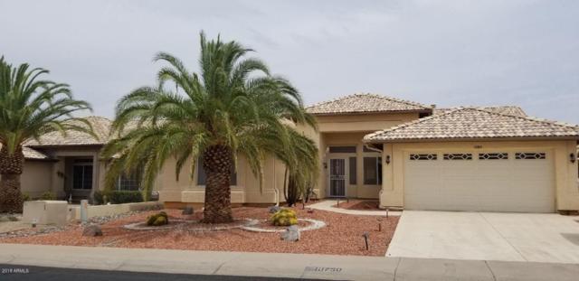 10750 W Tonopah Drive, Sun City, AZ 85373 (MLS #5780976) :: Occasio Realty