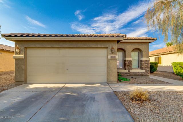 2648 W Kristina Avenue, Queen Creek, AZ 85142 (MLS #5781003) :: My Home Group