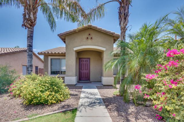 2421 E Toledo Court, Gilbert, AZ 85295 (MLS #5781011) :: The Everest Team at My Home Group