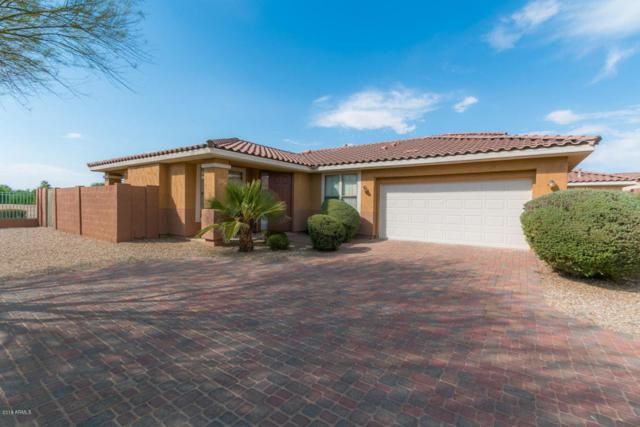 13534 W Cypress Street, Goodyear, AZ 85395 (MLS #5781041) :: My Home Group