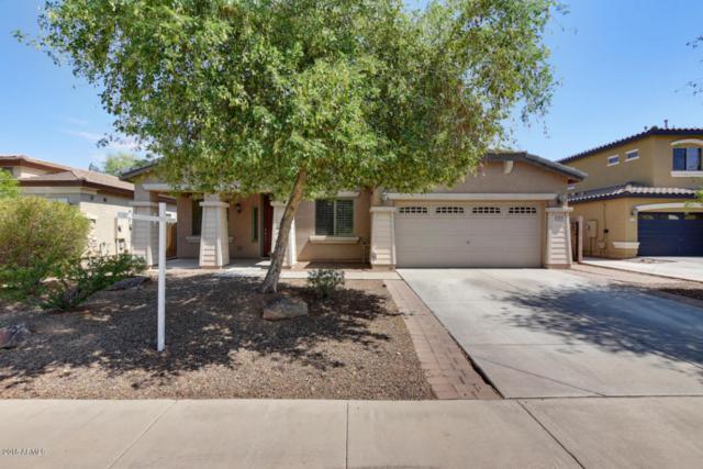 13818 W Earll Drive, Avondale, AZ 85392 (MLS #5781050) :: My Home Group
