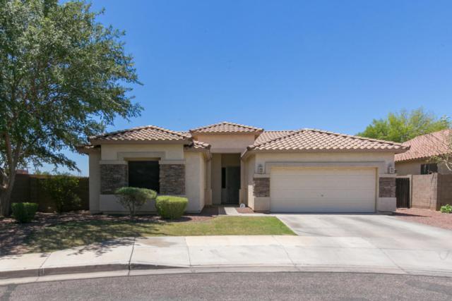 12811 W Campbell Avenue, Litchfield Park, AZ 85340 (MLS #5781062) :: Phoenix Property Group