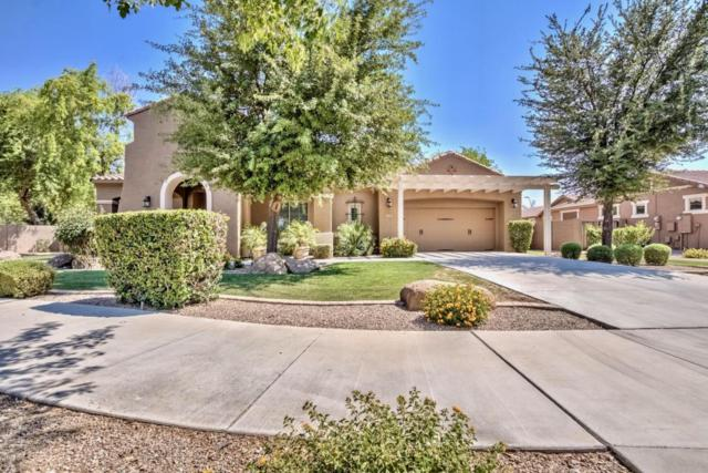 19297 E Estrella Road, Queen Creek, AZ 85142 (MLS #5781074) :: Lifestyle Partners Team
