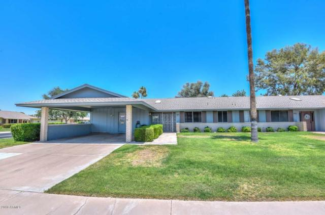 9916 W Raintree Drive, Sun City, AZ 85351 (MLS #5781089) :: Occasio Realty