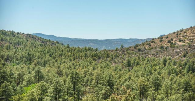 1334 E Pine Ridge Drive, Prescott, AZ 86303 (MLS #5781114) :: Openshaw Real Estate Group in partnership with The Jesse Herfel Real Estate Group