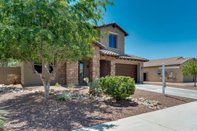 12323 W Monte Lindo Lane, Sun City West, AZ 85375 (MLS #5781118) :: The Worth Group