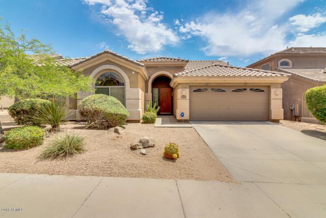 10601 E Sheena Drive, Scottsdale, AZ 85255 (MLS #5781131) :: Yost Realty Group at RE/MAX Casa Grande
